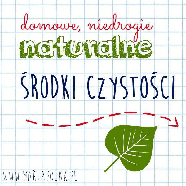 naturalne ekologiczne środki czystości