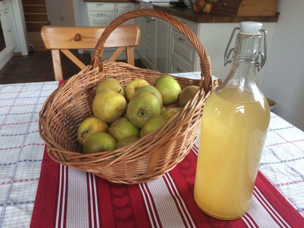 Naturalny ocet jabłkowy w szklanej butelce, wiklinowy kosz pełen jabłek - Ocet jabłkowy - prosty przepis, cudowne działanie, mnóstwo zastosowań.