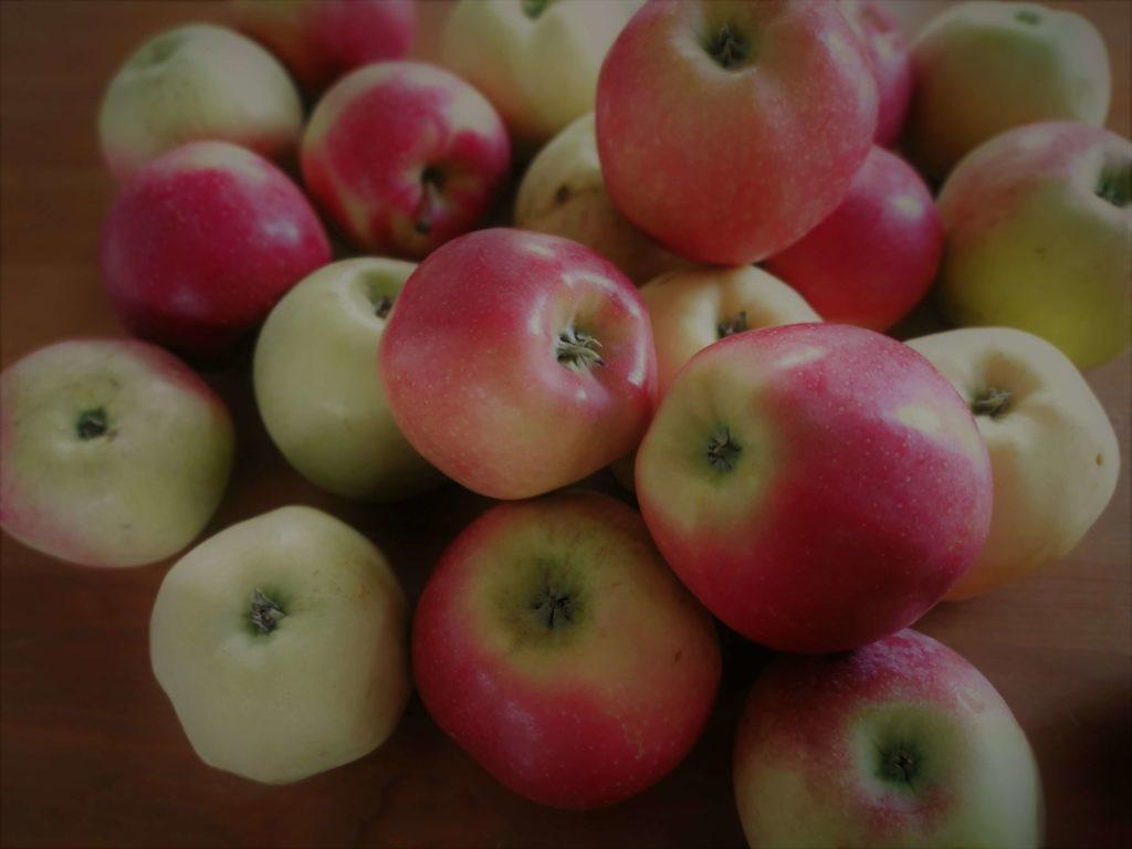 Różne odmiany jabłek - Naturalny ocet jabłkowy
